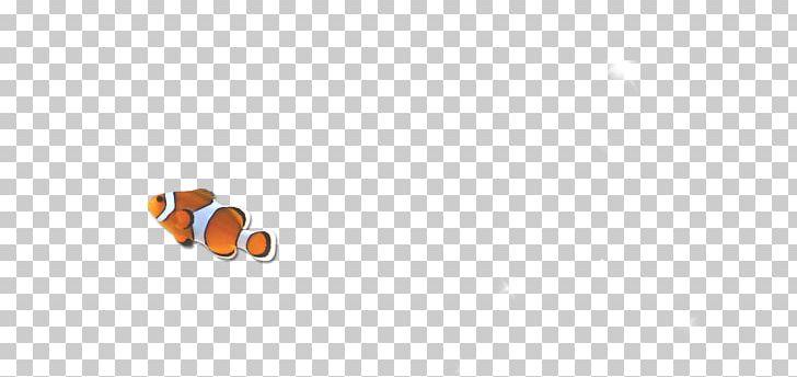 Pattern PNG, Clipart, Angle, Animals, Aquarium Fish, Circle, Computer Free PNG Download