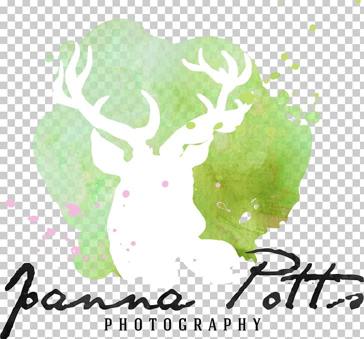 Logo Desktop Computer Font PNG, Clipart, Animal, Art, Computer, Computer Wallpaper, Desktop Wallpaper Free PNG Download