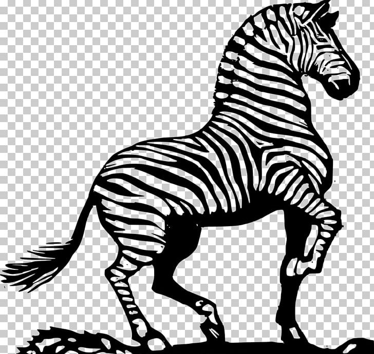 Drawing Line Art Zebra Coloring Book PNG, Clipart, Animals, Art ...