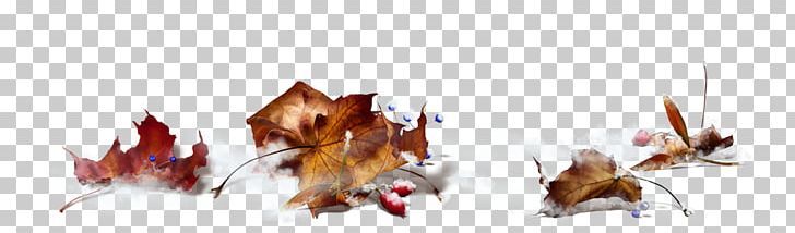 Maple Leaf Autumn PNG, Clipart, Animal Figure, Autumn, Cari, Computer Icons, Fall Free PNG Download