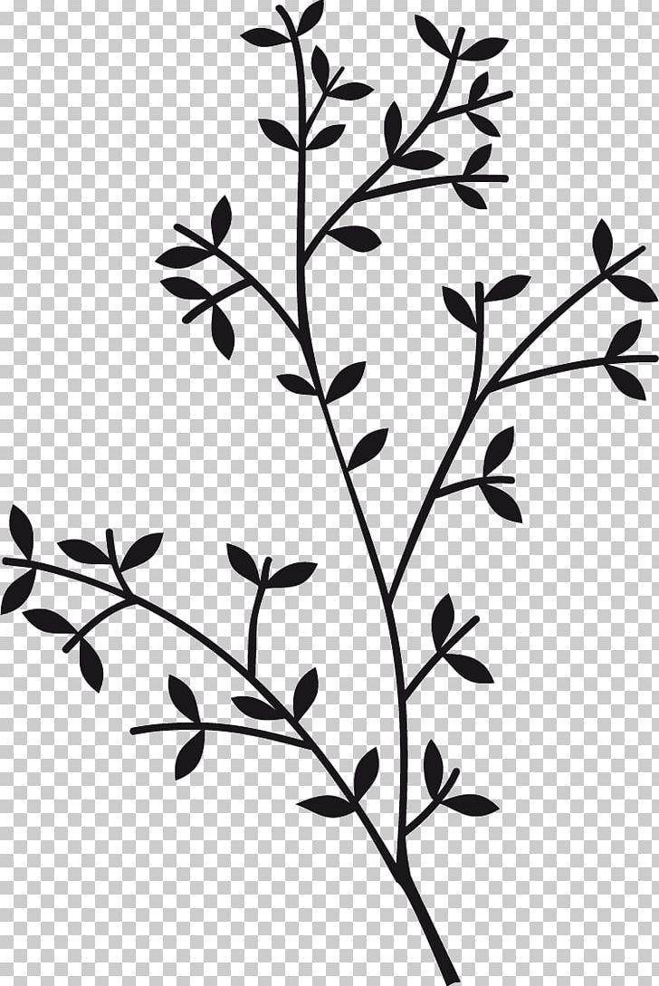 Leaf flower. Twig plant stem png