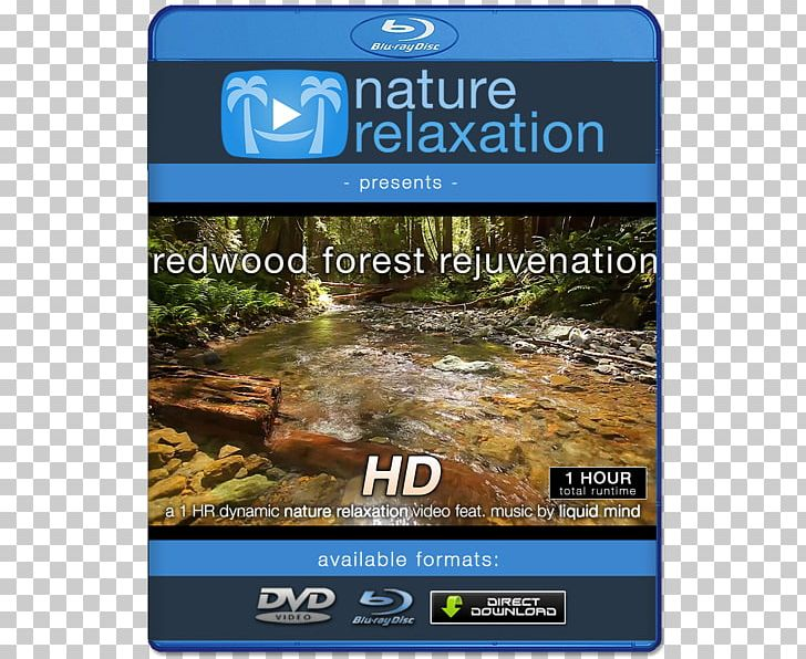 Blu Ray Disc 4k Resolution Ultra High Definition Television 1080p Png Clipart 4k Resolution 1080p Bluray