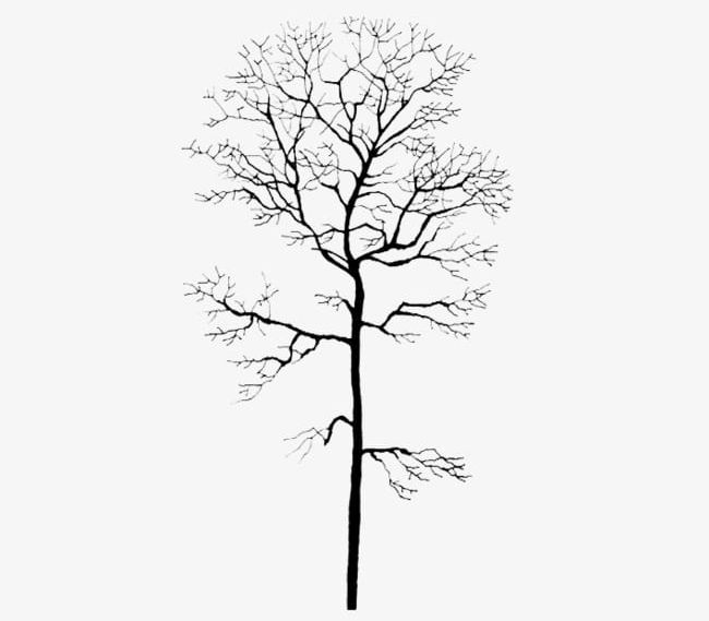 Winter Tree Trunk Png Clipart Backgrounds Bare Tree Black Color Branch Dead Plant Free Png Download