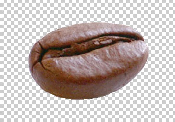 Coffee Bean Espresso Kopi Luwak Cafe PNG, Clipart, Baked Goods, Bean, Beans, Brewed Coffee, Cafe Free PNG Download