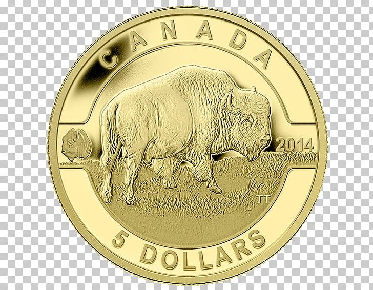 Canada Royal Canadian Mint Gold Coin PNG, Clipart, Bison, Bullion