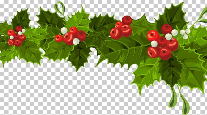 Common Holly Christmas Decoration Mistletoe PNG, Clipart, Christmas, Christmas Decorating Cliparts, Christmas Decoration, Christmas Ornament, Christmas Tree Free PNG Download