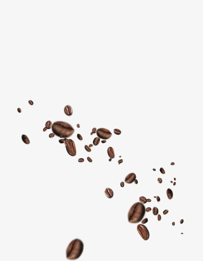 Download coffee bean clipart png photo | TOPpng