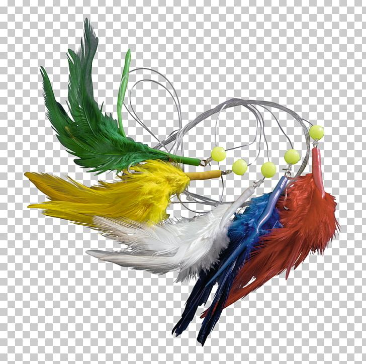Bird Feather Macaw Beak Wing PNG, Clipart, Animals, Beak, Bird, Feather, Macaw Free PNG Download