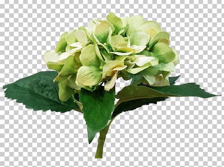 Cut Flowers Floral Design Floristry Flower Bouquet PNG, Clipart, Artificial Flower, Cornales, Cut Flowers, Floral Design, Floristry Free PNG Download
