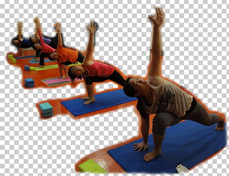 Teacher Education Yoga Curriculum PNG, Clipart, Arts, College, Course, Curriculum, Diploma Free PNG Download