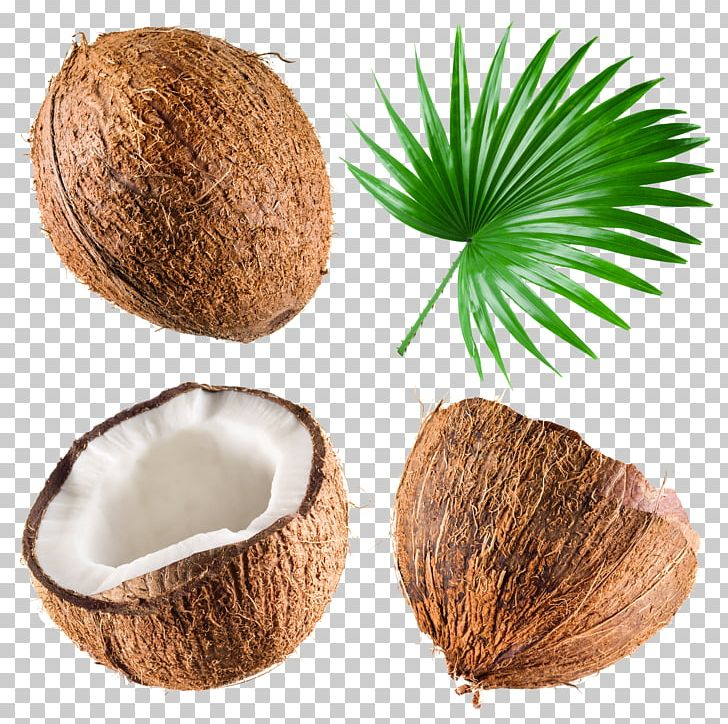 Coconut Milk Coconut Water Stock Photography PNG, Clipart, Almond Nut, Arecaceae, Coconut, Coconut Leaves, Coconut Meat Free PNG Download