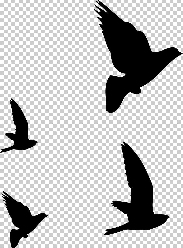 Hummingbird Flight Silhouette Drawing PNG, Clipart, Animals, Art, Beak, Bird, Bird Flight Free PNG Download