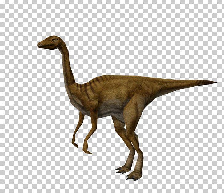 Gallimimus Jurassic Park: Operation Genesis Jurassic Park: The Game Dinosaur PNG, Clipart, Animal Figure, Beak, Extinction, Fantasy, Fauna Free PNG Download