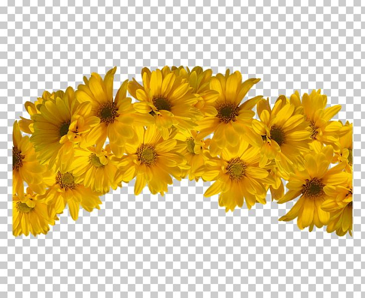Yellow Wreath Flower Crown Headpiece PNG, Clipart, Chrysanths, Common Daisy, Crown, Cut Flowers, Daisy Family Free PNG Download