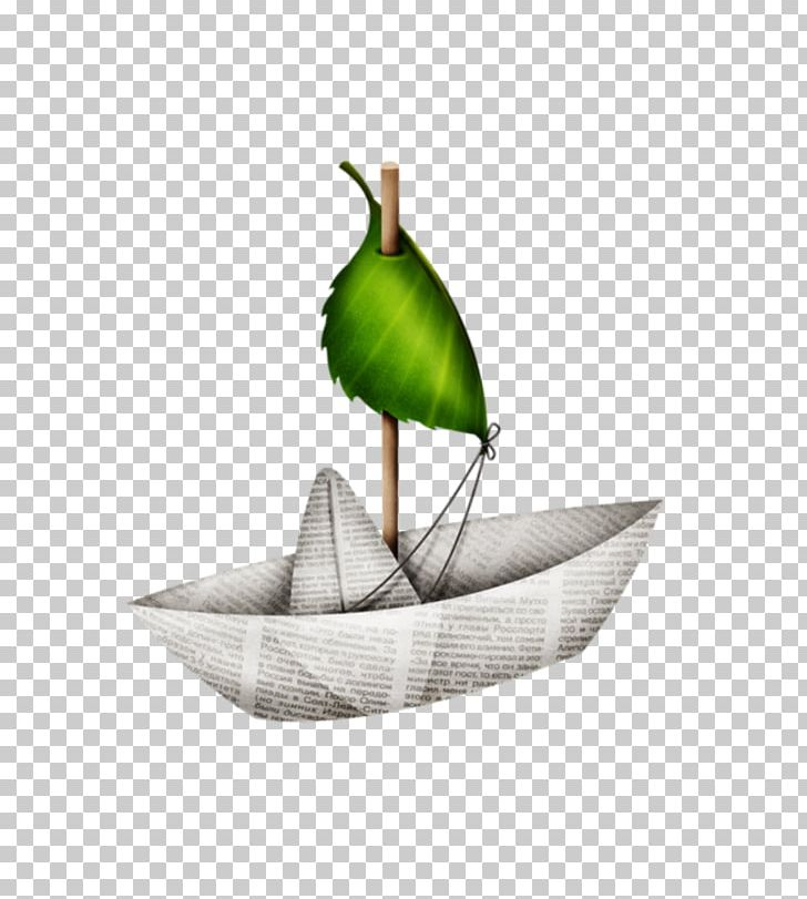 Leaf PNG, Clipart, Art, Bateau, Leaf Free PNG Download