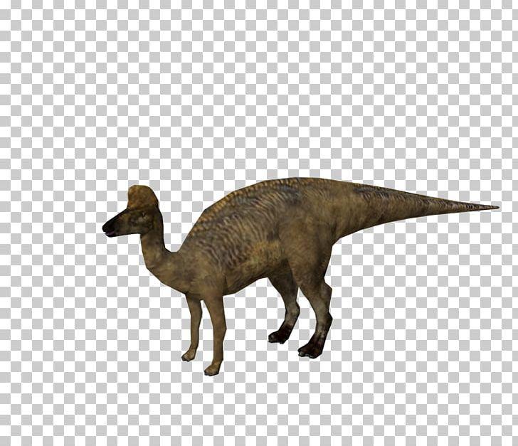 Velociraptor Corythosaurus Jurassic Park: Operation Genesis Hadrosaurus Lambeosaurus PNG, Clipart, Animal Figure, Corythosaurus, Dinosaur, Extinction, Fantasy Free PNG Download