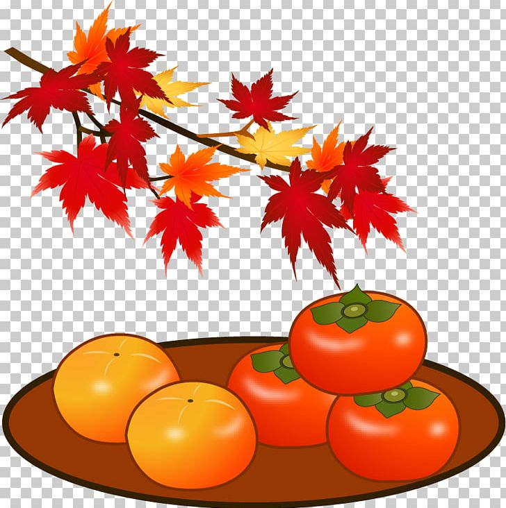 Tomato Japanese Persimmon Autumn Leaf Color Tannin PNG, Clipart, Autumn, Autumn Leaf Color, Dried Persimmon, Florist, Flower Free PNG Download