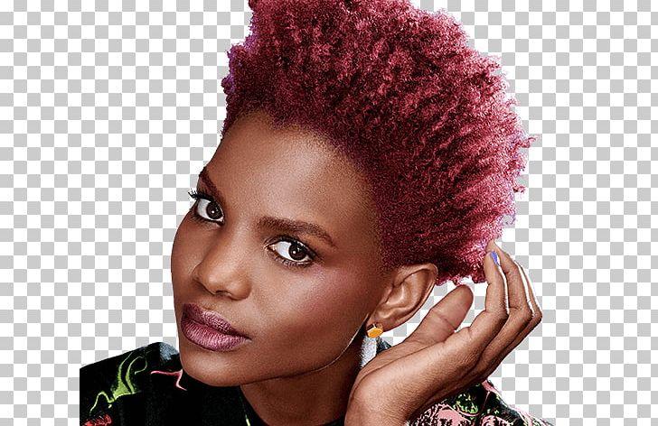 Human Hair Color Black Hair Hair Coloring PNG, Clipart, African American, Afro, Auburn Hair, Black, Black Hair Free PNG Download