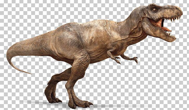 400+ Gambar Dinosaurus Spinosaurus HD Terbaru
