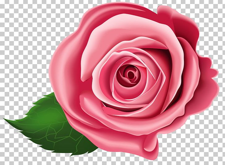 Flower Arranging Floribunda Clipart PNG, Clipart, Animation, Art, Clipart, Closeup, Cut Flowers Free PNG Download