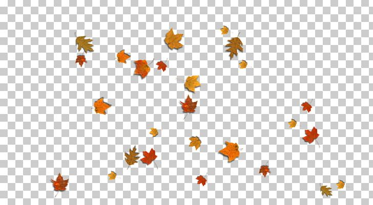Autumn Leaf Color Desktop PNG, Clipart, August, Autumn, Autumn Leaf Color, Computer Wallpaper, Desktop Wallpaper Free PNG Download