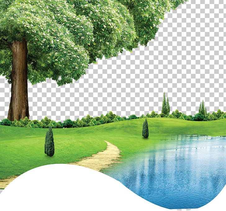 CorelDRAW Green PNG, Clipart, Background Vector, Computer Wallpaper