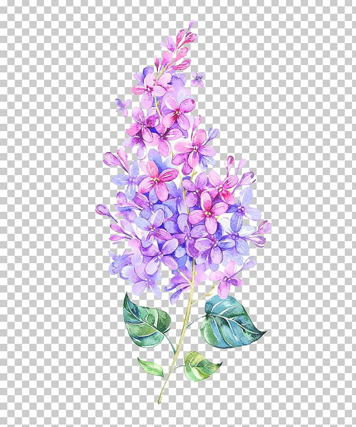 Pink Flower Purple Color PNG, Clipart, Artificial Flower, Autumn, Blue, Branch, Cartoon Free PNG Download