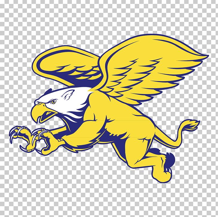 finest selection be692 c5036 Canisius College Canisius Golden Griffins Women's Basketball ...