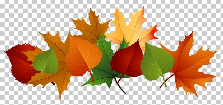 Autumn Leaf Color Desktop PNG, Clipart, Autumn, Autumn Leaf Color, Computer Wallpaper, Desktop Wallpaper, Download Free PNG Download