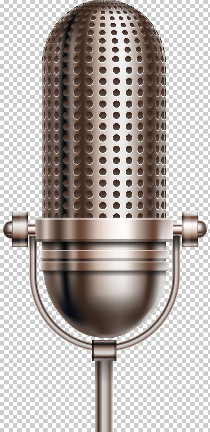 Microphone Voice Changer Sound Recording And Reproduction