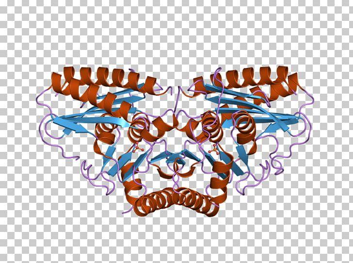 Animal Bone Logo PNG, Clipart, Animal, Bone, Human, Inositol, Ion Free PNG Download