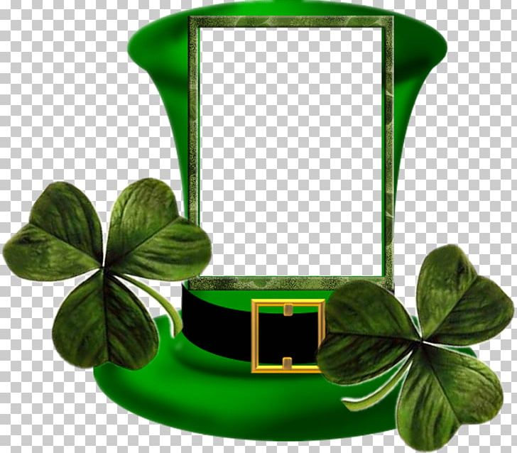 Ireland Saint Patrick's Day Irish People March 17 PNG, Clipart, Clover, Gfycat, Green, Holiday, Holidays Free PNG Download