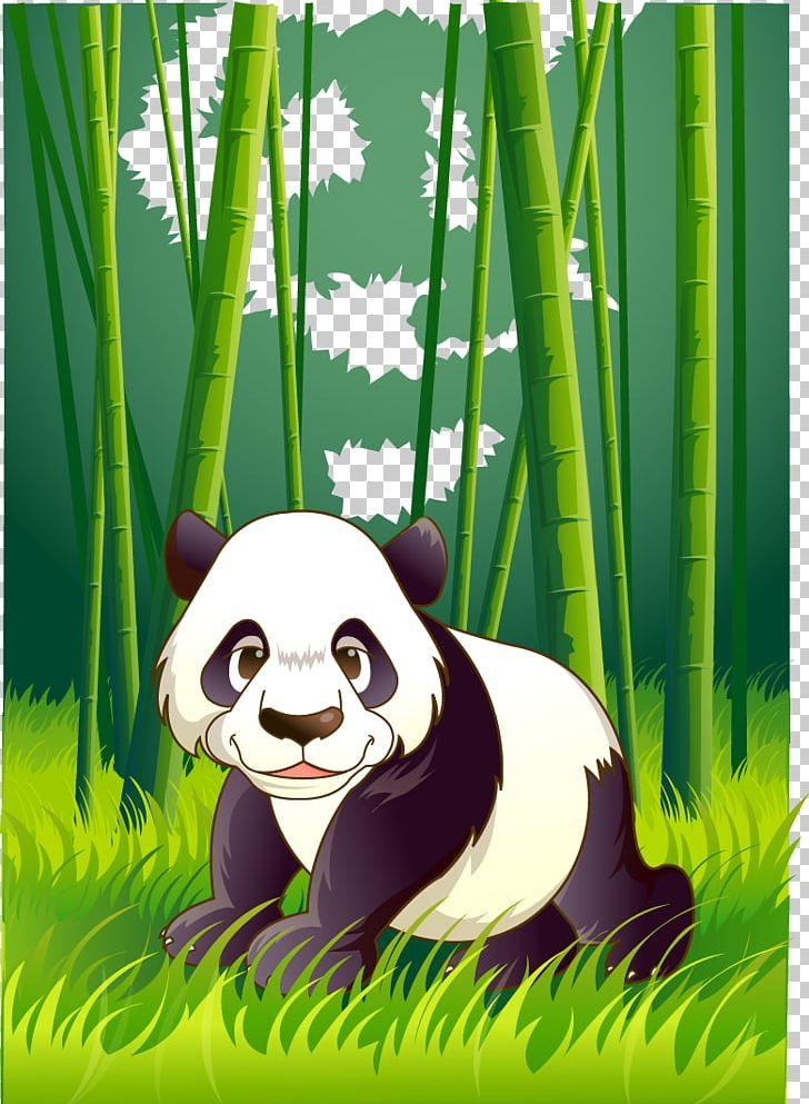 Giant Panda Kung Fu Panda Png Clipart Animals Baby Panda Bamboo Carnivoran Cartoon Free Png Download
