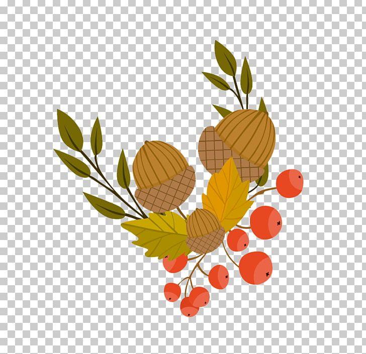 Autumn Leaf Color Illustration PNG, Clipart, Acorn, Acorn And Flowers, Acorn Border, Acorn Forest, Acorns Free PNG Download