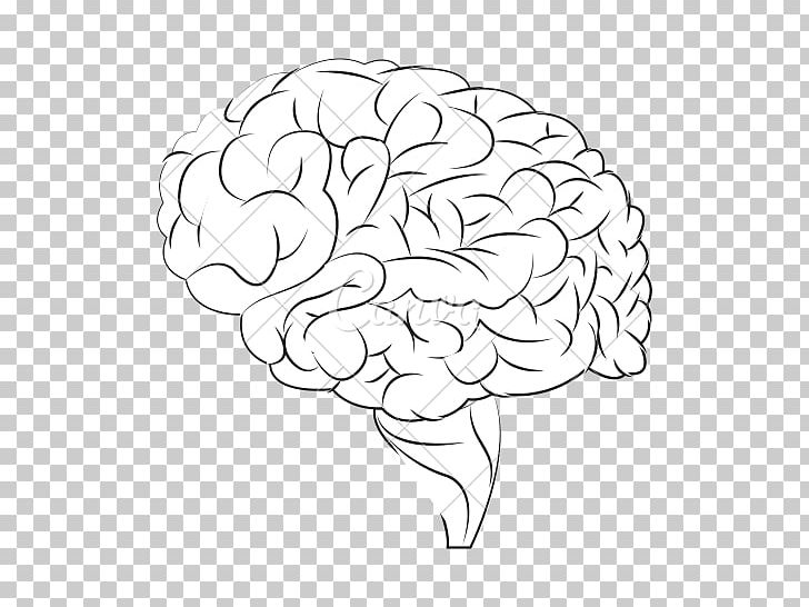 Human Brain Drawing PNG, Clipart, Agy, Area, Artwork, Black And White, Brain Free PNG Download