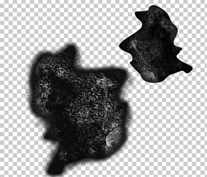 Texture Mapping Alpha Compositing Shader Alpha Mapping Unity PNG