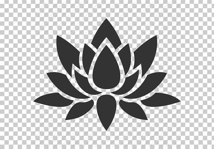 Nelumbo Nucifera Flower Decal Png Clipart Aquatic Plants Black