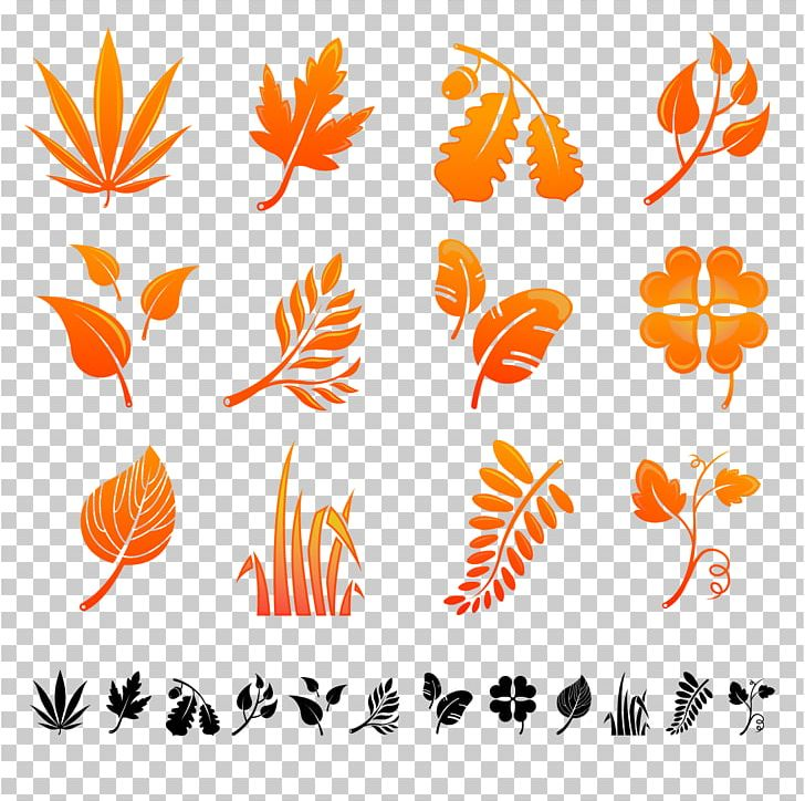 Autumn Leaf Color Autumn Leaf Color PNG, Clipart, Autumn, Autumn Leaf Color, Autumn Leaves, Autumn Tree, Autumn Vector Free PNG Download