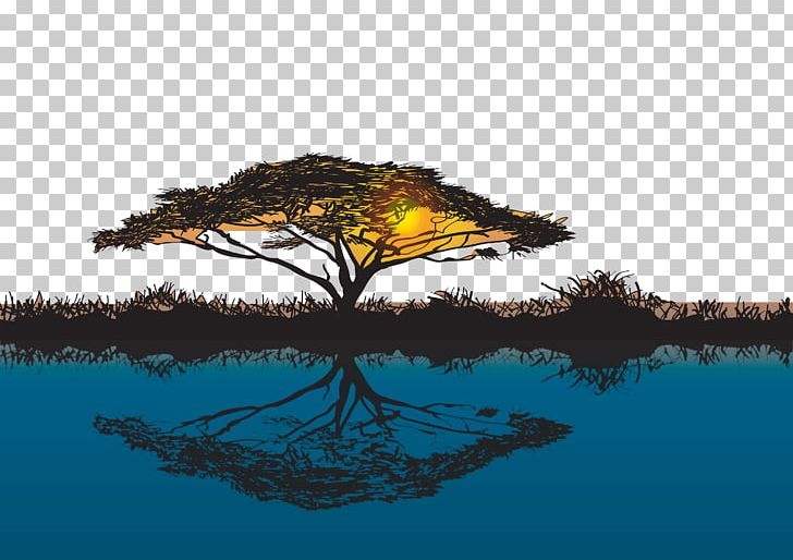 Sunset Giraffe Tree Acacia Baobab PNG, Clipart, Autumn Tree, Christmas Tree, Computer Wallpaper, Dawn, Dead Branches And Leaves Free PNG Download