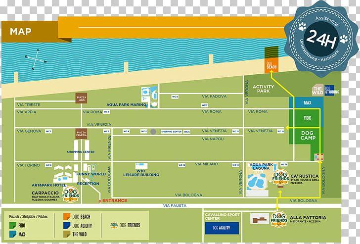 Union Lido Dog Camp Fantastic Dog Camp 2020 03 11