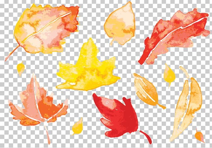 Autumn Leaves Watercolor Painting Leaf PNG, Clipart, Autumn, Autumn Leaf Color, Autumn Leaves, Cartoon, Download Free PNG Download