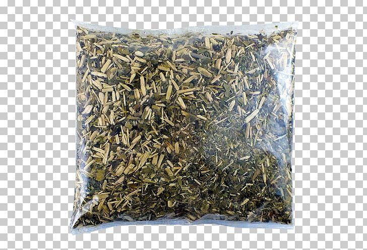 Nilgiri Tea Hōjicha Mate Tea Plant Silhouette PNG, Clipart, Bancha, Chun Mee Tea, Dianhong, Earl Grey Tea, Hojicha Free PNG Download