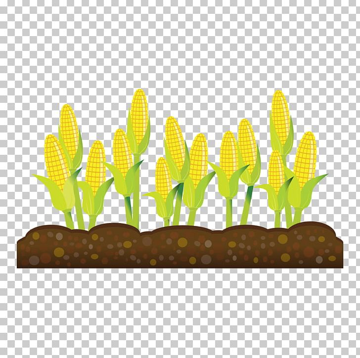 Crop Agriculture Farm Field PNG, Clipart, Agriculture ...