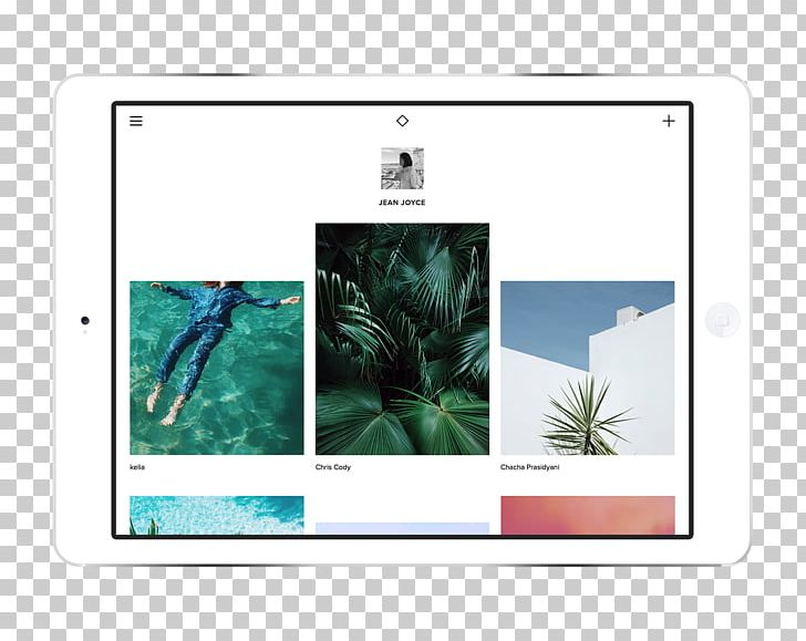 VSCO Mobile App Adobe Lightroom Company PNG, Clipart, Adobe