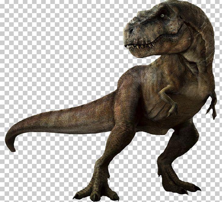 Tyrannosaurus Jurassic Park: The Game Velociraptor PNG, Clipart, Dinosaur, Drawing, Indominus Rex, Jurassic, Jurassic Park Free PNG Download