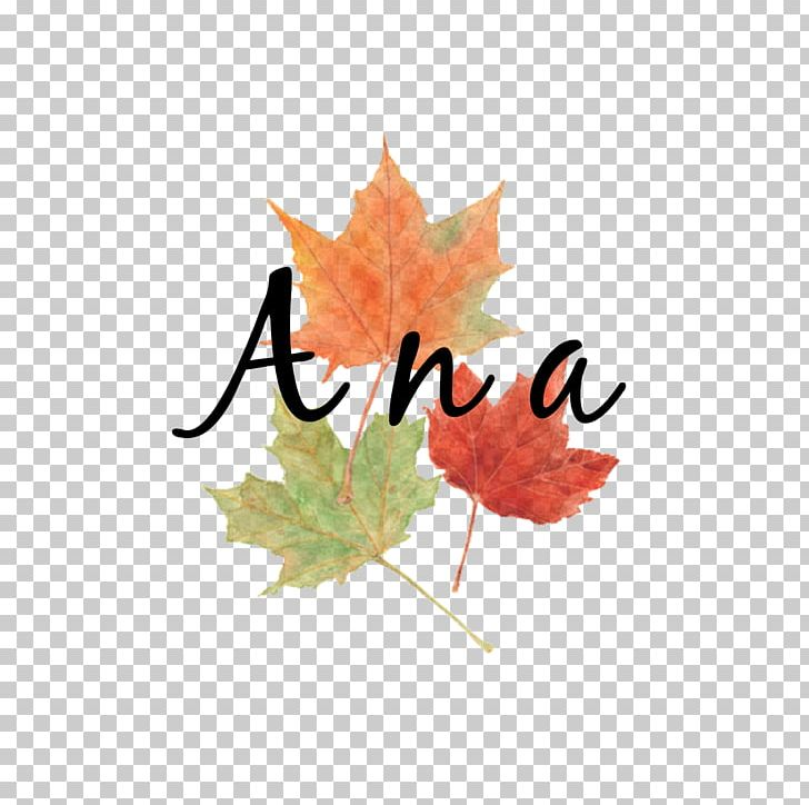 Autumn Leaf Color Watercolor Painting Maple Leaf PNG, Clipart, Art, Autumn, Autumn Leaf Color, Color, Dragee Free PNG Download