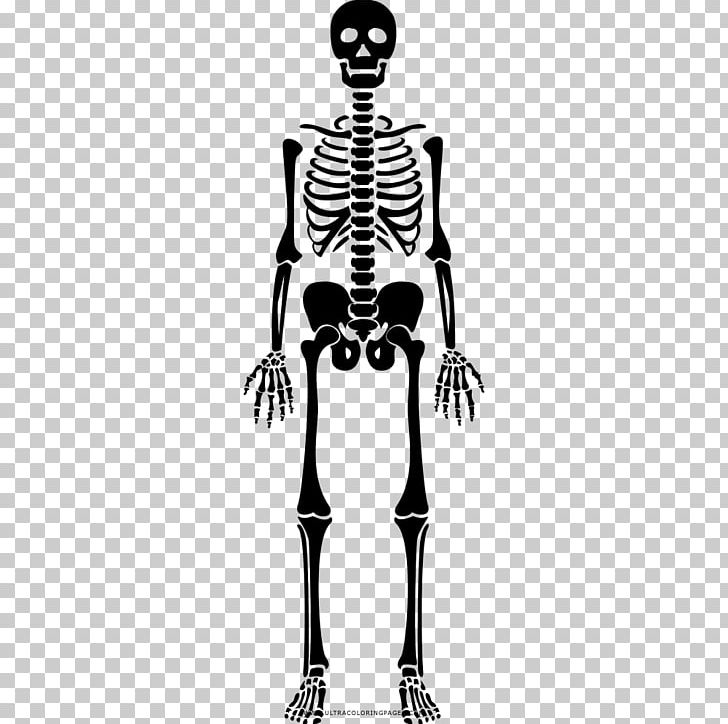 Human Skeleton Bone Drawing Coloring Book PNG, Clipart, Arm, Black ...