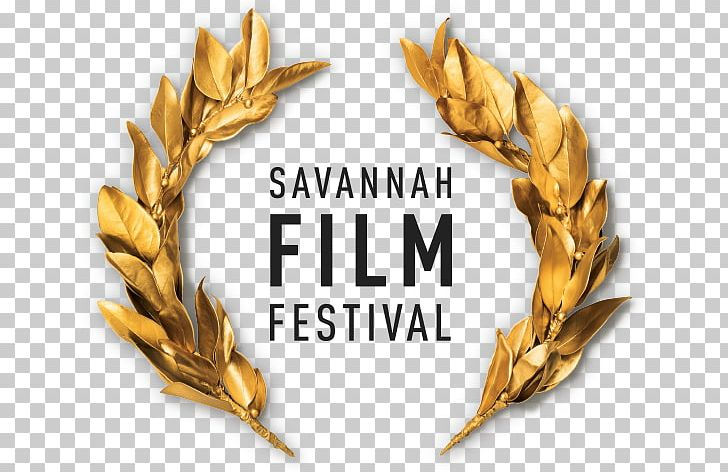 Savannah College Of Art And Design Savannah Film Festival Film Director PNG, Clipart,  Free PNG Download