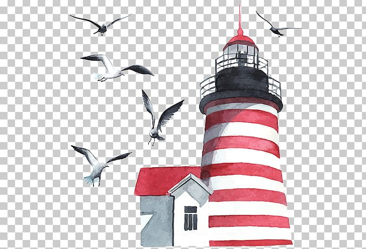 Watercolor Painting Lighthouse PNG, Clipart, Art, Beak, Bird