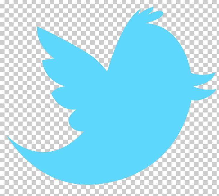 Logo Social Media PNG, Clipart, Aqua, Azure, Beak, Bird, Bird Vector Free PNG Download